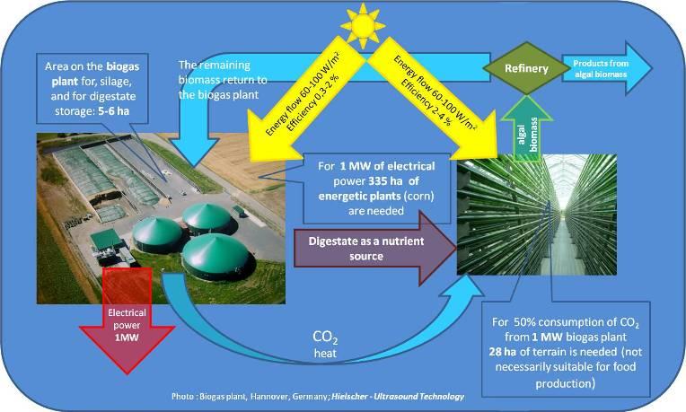 Biogas Digestate Treatment | algen eu